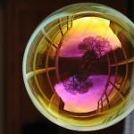 Мыльные пузыри Ричарда Хикса