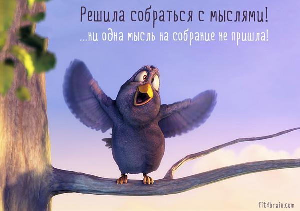 06-bird2
