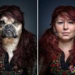 Собаки и их питомцы