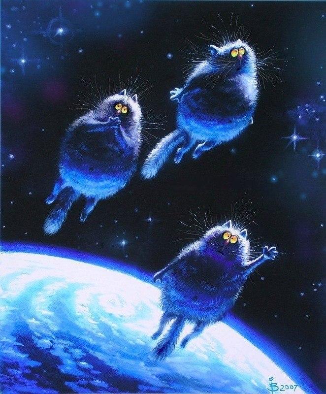 Голубые коты-01