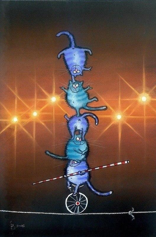 Голубые коты-05