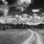 Другая дорога